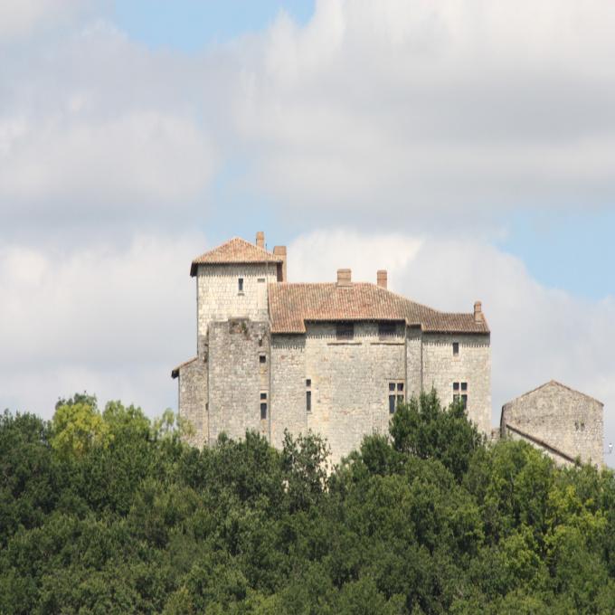 Offres de vente Château Saint-Clar (32380)