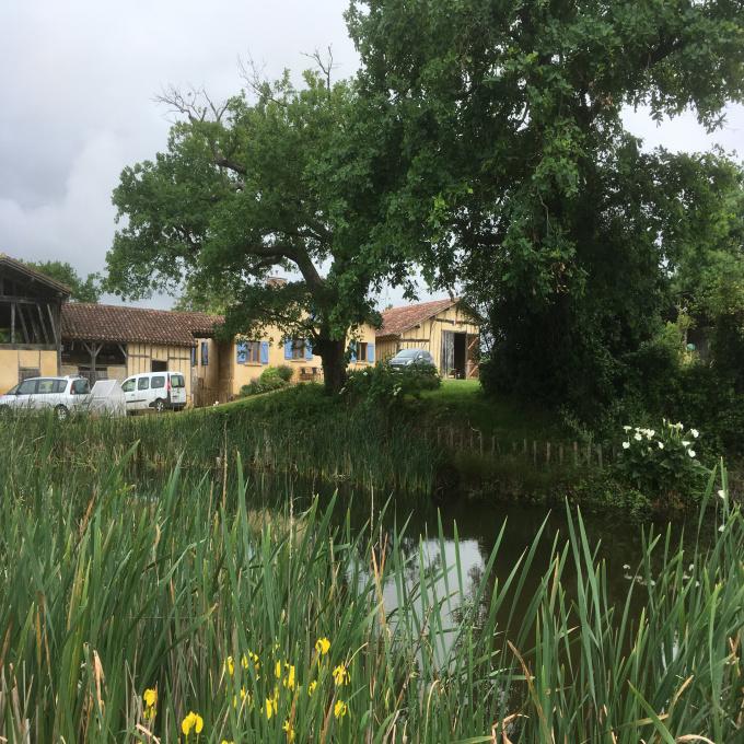 Offres de vente Propriété viticole & Agricole Estang (32240)